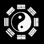 yinyangvector